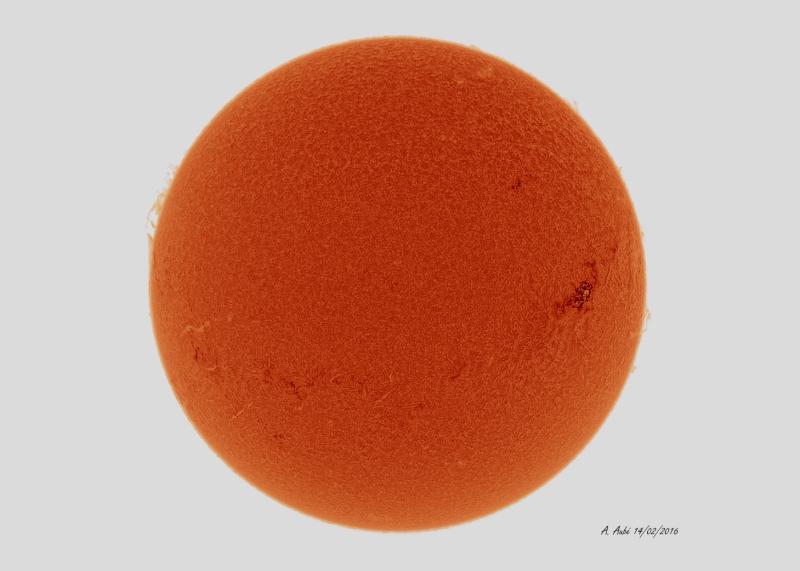 14 Février 2016 : Le Soleil en Hydrogène Alpha